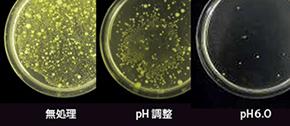 殺菌が難しいといわれているキュウリですが、スーパー次亜水を使用することで 菌数の制御が可能です。